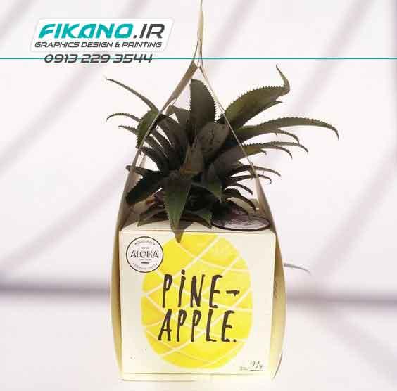 سفارش طراحی بسته بندی میوه - سایت فیکانو www.fikano.ir